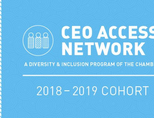Get to know this year's CEO Access Network