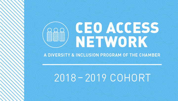 CEO Access 2018-19 Cohort